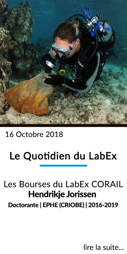 http://www.labex-corail.fr/wp-content/uploads/Box_FrontPage_Oct2018_Quotidien_1-424x848.jpg