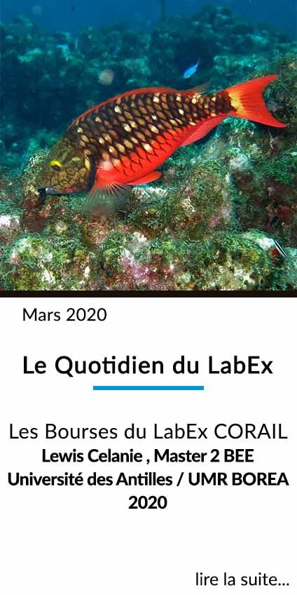 https://www.labex-corail.fr/wp-content/uploads/LABEX_FrontPage_Box_Mars2020-424x848.jpg