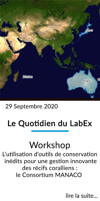 https://www.labex-corail.fr/wp-content/uploads/LABEX_FrontPage_Box_Sept2020v2-424x848.jpg