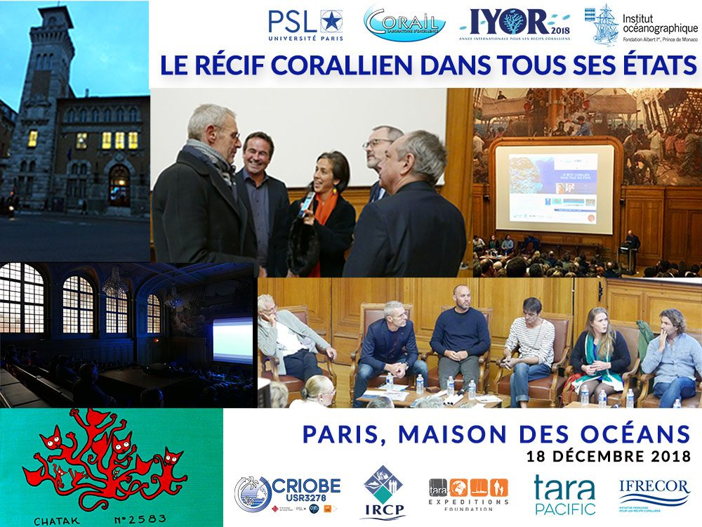 http://www.labex-corail.fr/wp-content/uploads/MDO-EVENT_Collage_DEC2018_3-1000x750.jpg