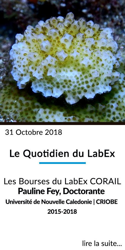http://www.labex-corail.fr/wp-content/uploads/Quotidien_PFey_31Oct2018_Box-424x848.jpg